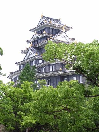birthday-crow-castle