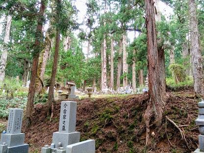 Mt. Koya– in oneday?!