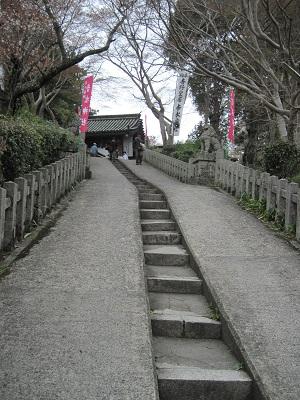 002 Yoshino Steep