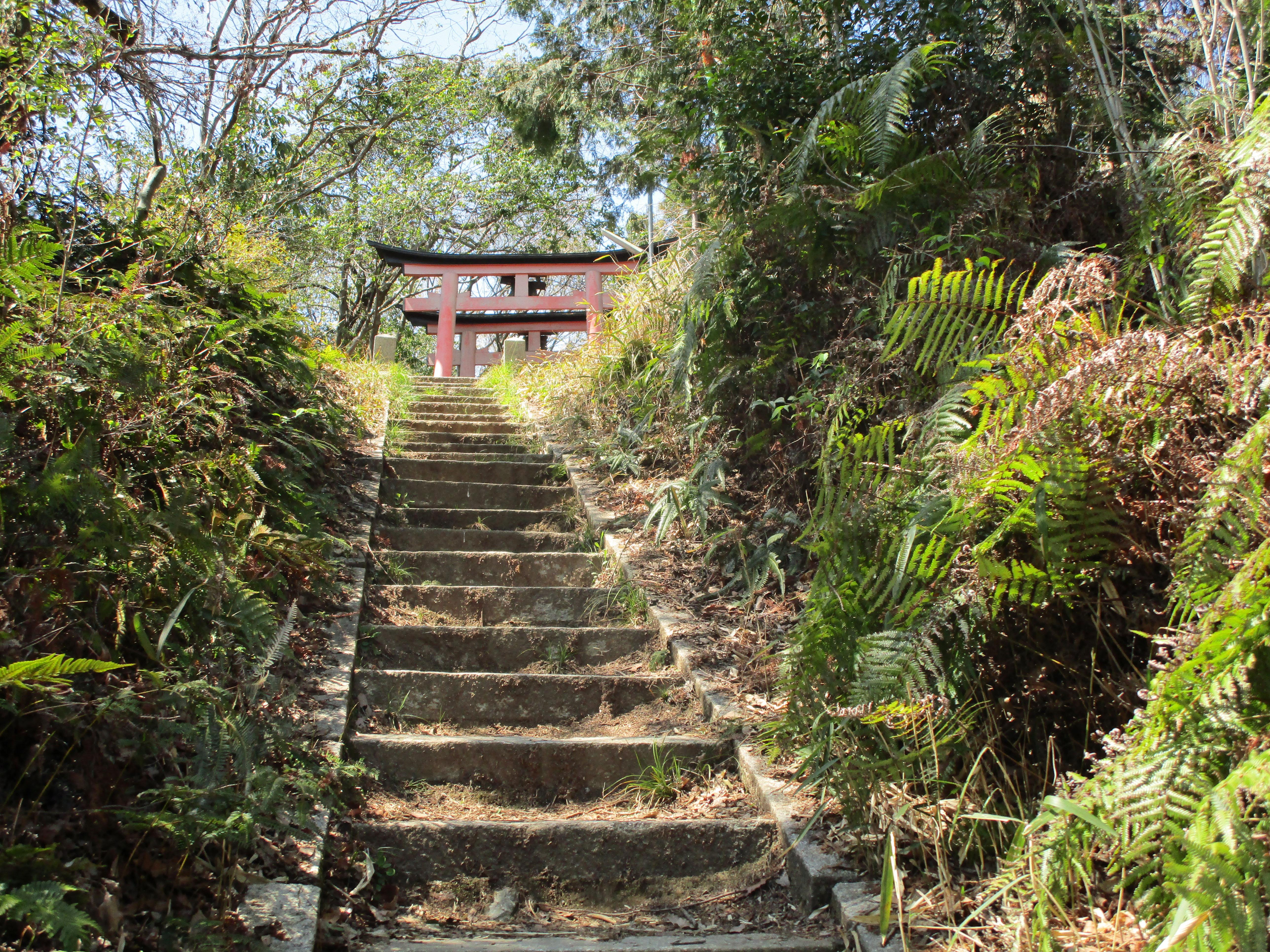 Fushimi Inari 2019 010 Gate at the top